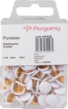 STAR punaises, blanc, boîte de 120 pièces